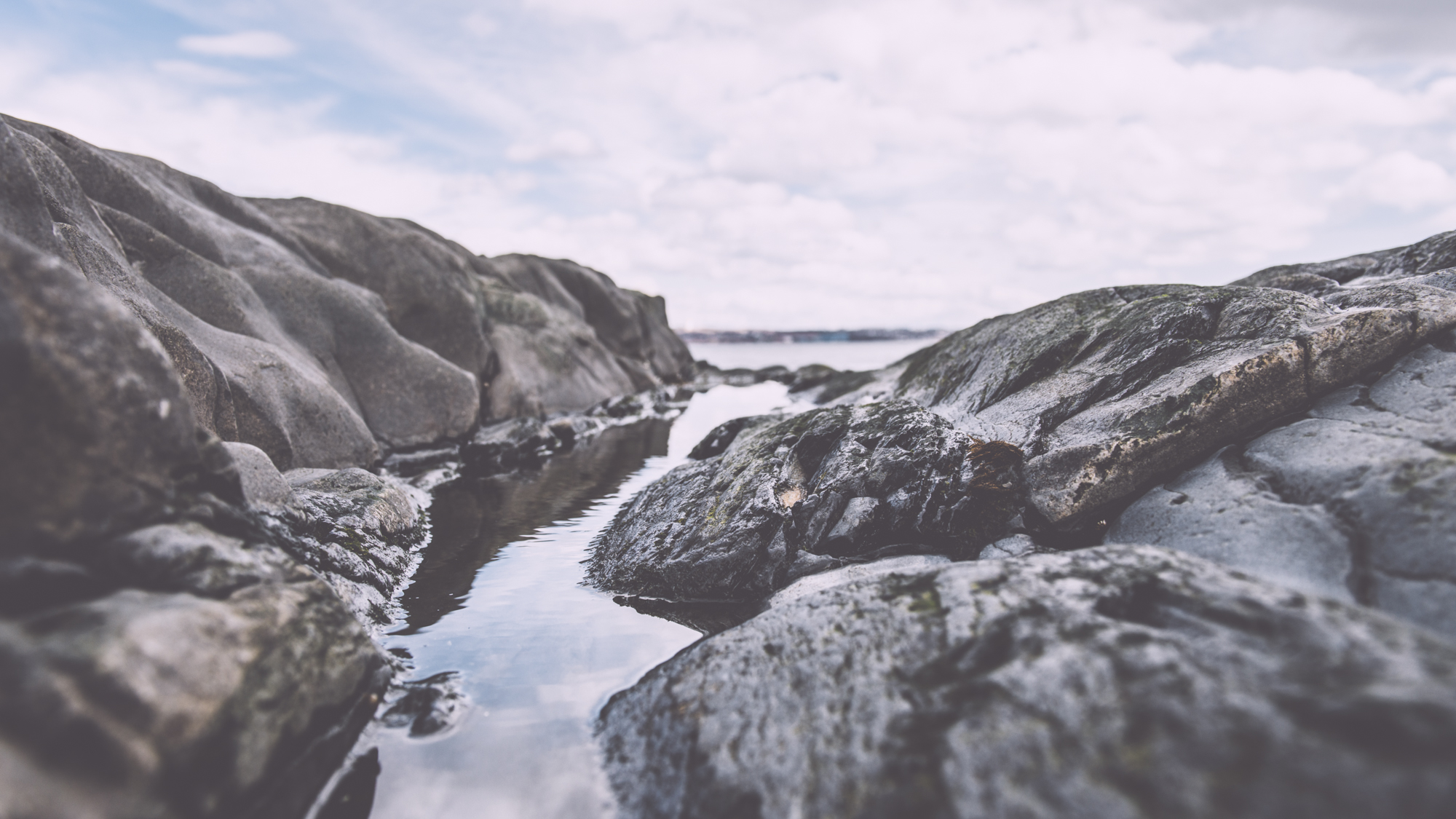 rocky shore Halifax